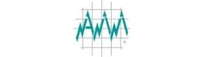 NANINI srl-logo
