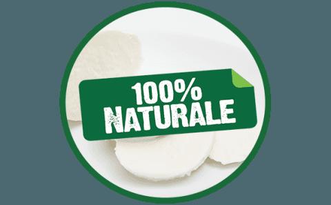 mozzarella naturale