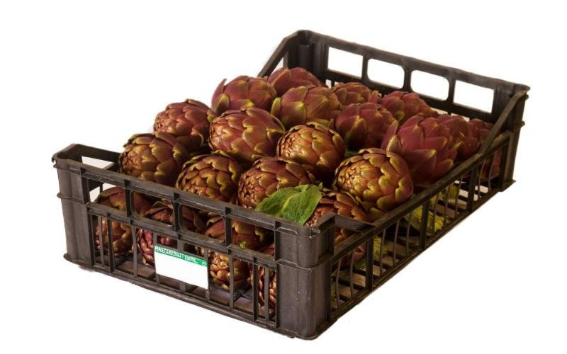 fornitura carciofi Master Fruit srl