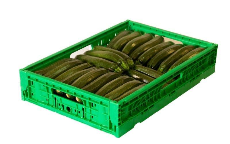 commercio zucchine siciliane