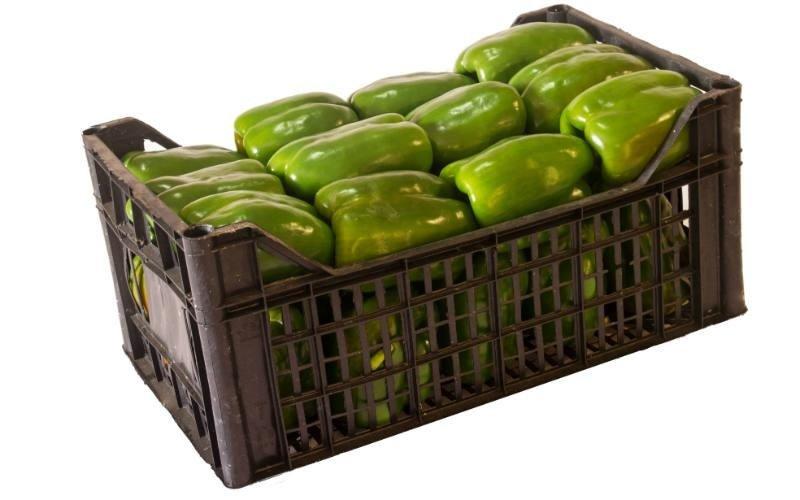 vendita peperoni verdi Master Fruit srl