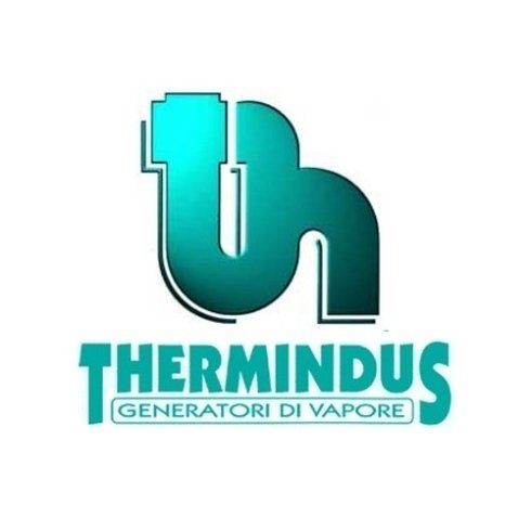 logo Thermindus