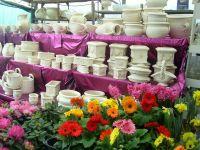 dei fiori di color arancione rosso e viola e dei vasi