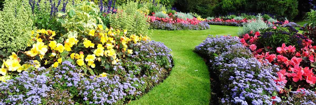 mick cave good seeds garden service flowery garden