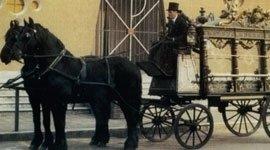 cavalli neri