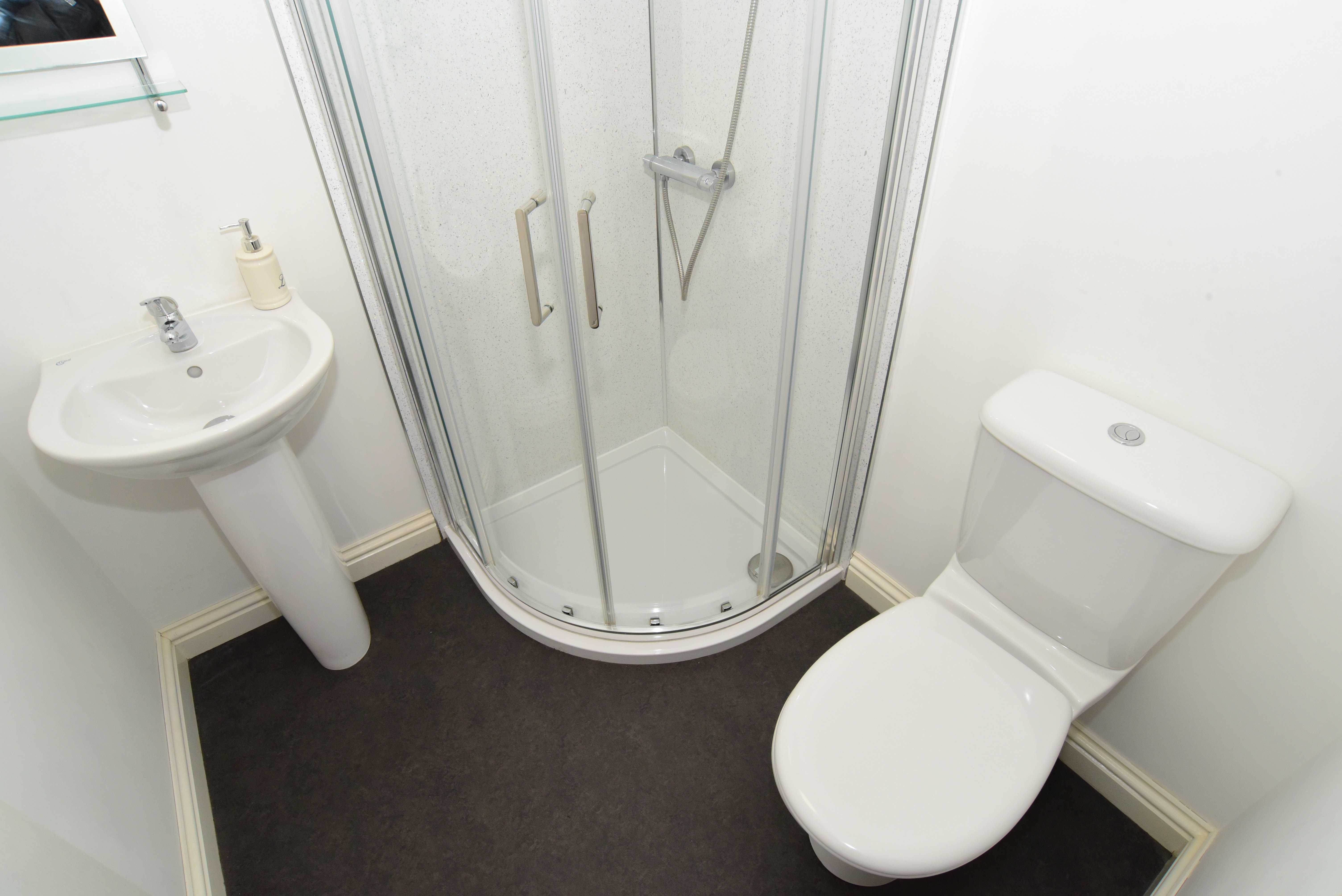 bathroom with wet and dry area