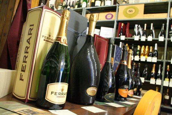 esposizione bottiglie pregiate di vino