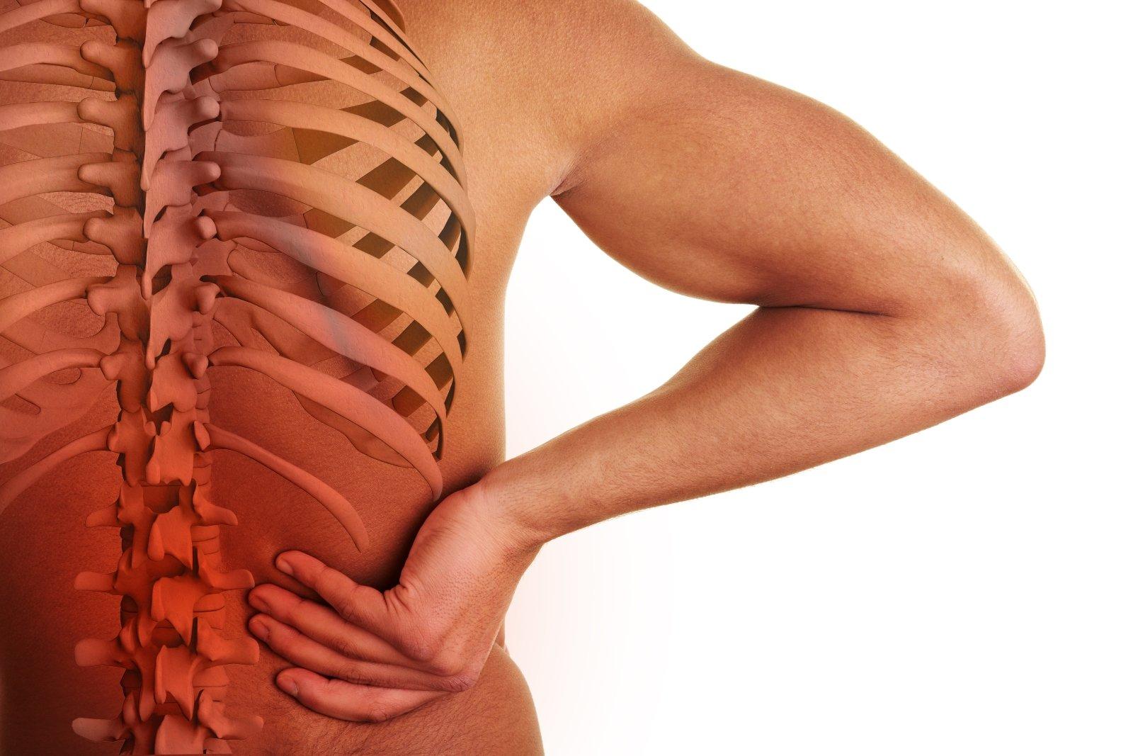 Anca tenendo la mano con la colonna vertebrale visibile e il centro del dolore alla schiena