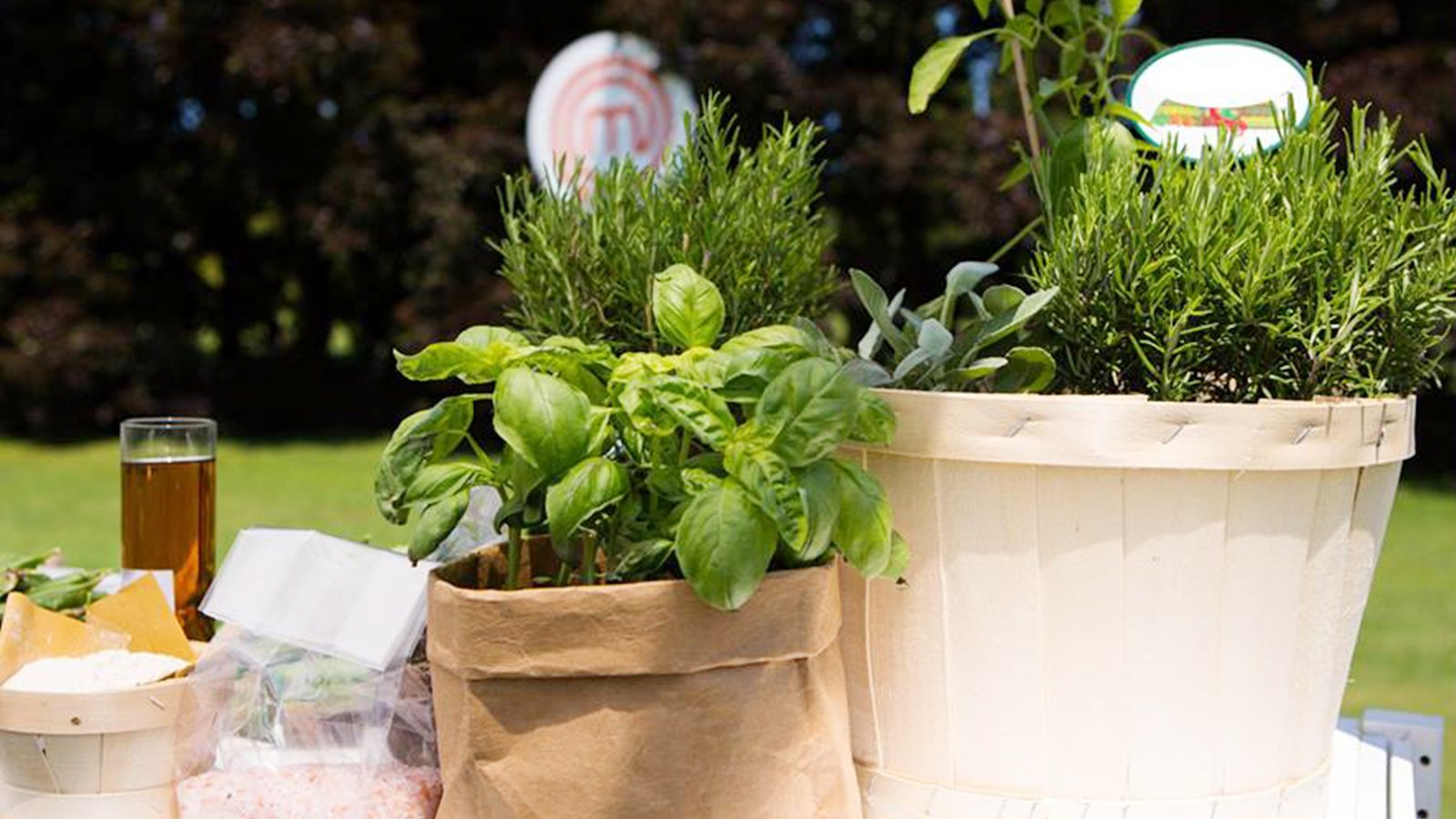 vasi di erbe aromatiche su tavolo in giardino