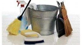 derattizzazione, disinfezione, pulizie pavimenti
