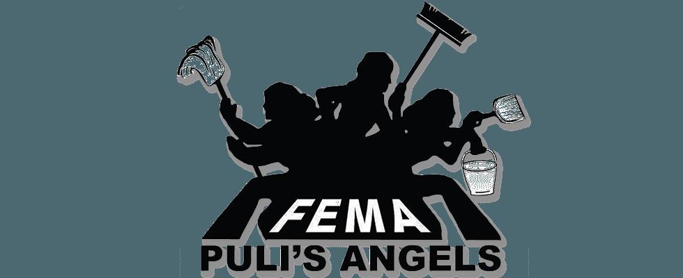 Impresa di Pulizia FEMA, Roma, Civitavecchia