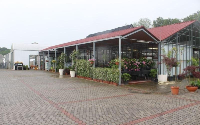 Azienda agricola Emanuele Gregori
