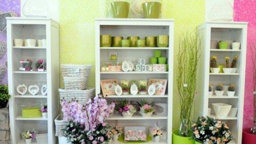 Esposizione vasi per piante e fiori recisi