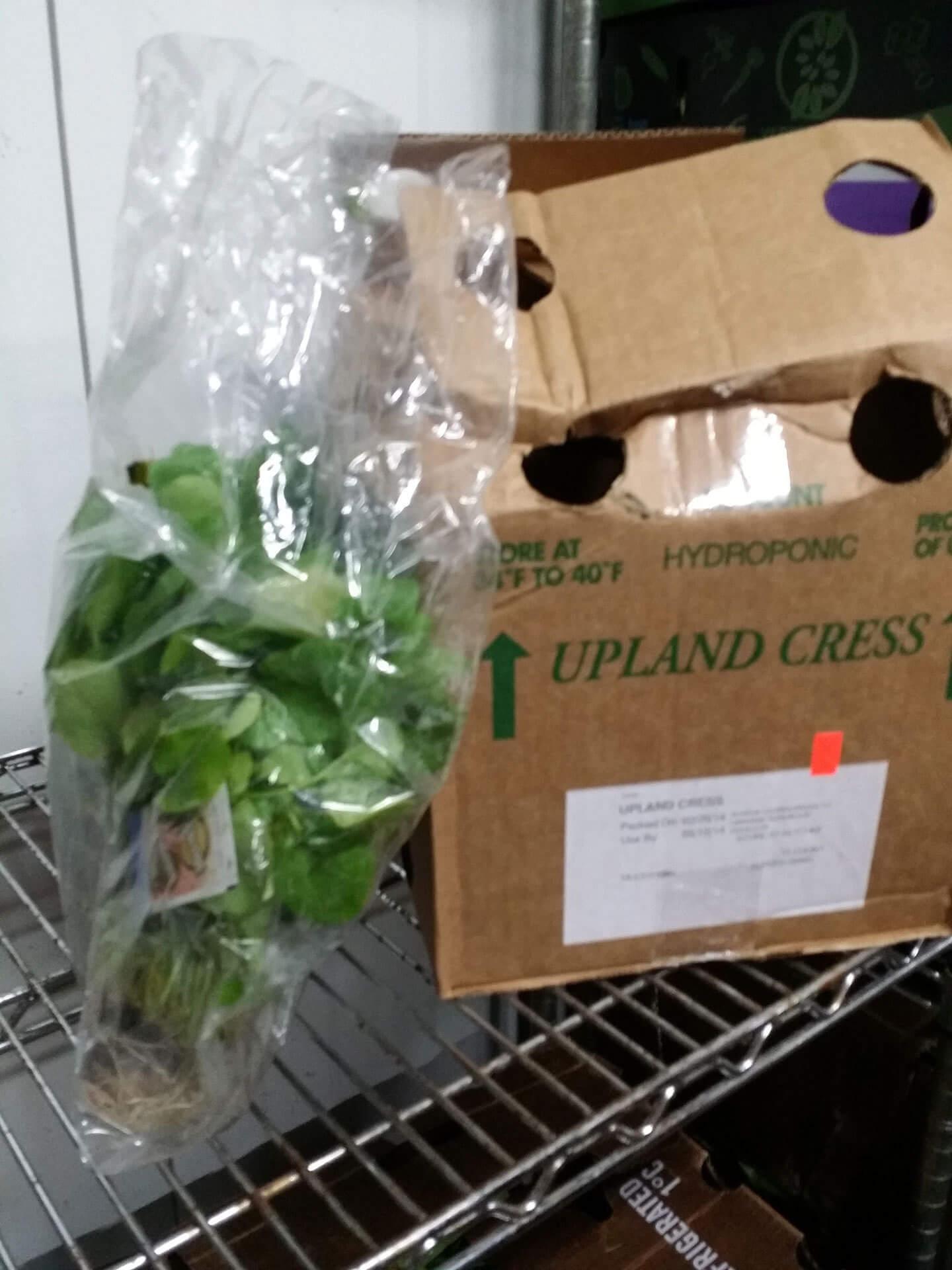 Specialty Produce San Antonio, TX