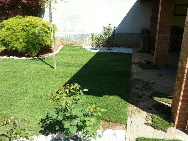 vista di un  prato e delle piante in un giardino