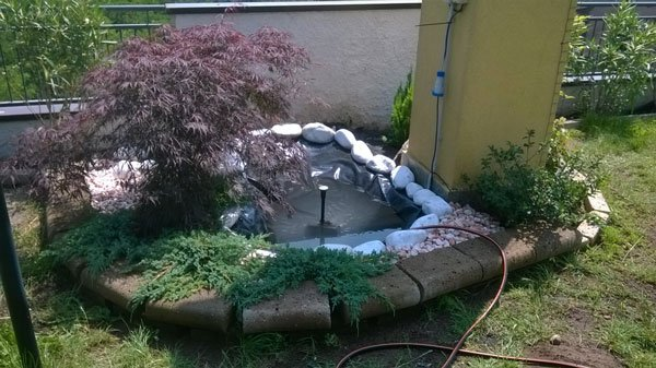 un'aiuola in pietra con delle  piante e una pozza d'acqua