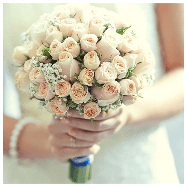 Bouquet of pale roses