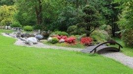 manutenzione del verde, cura dei giardini, progettazione giardini pensili
