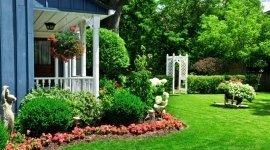 giardinaggio, cura dei fiori, prato in rotoli