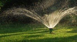 arieggiare il prato, manutenzione periodica dei giardini, antiparassitari