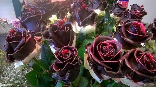 rose lucide per evento natalizio