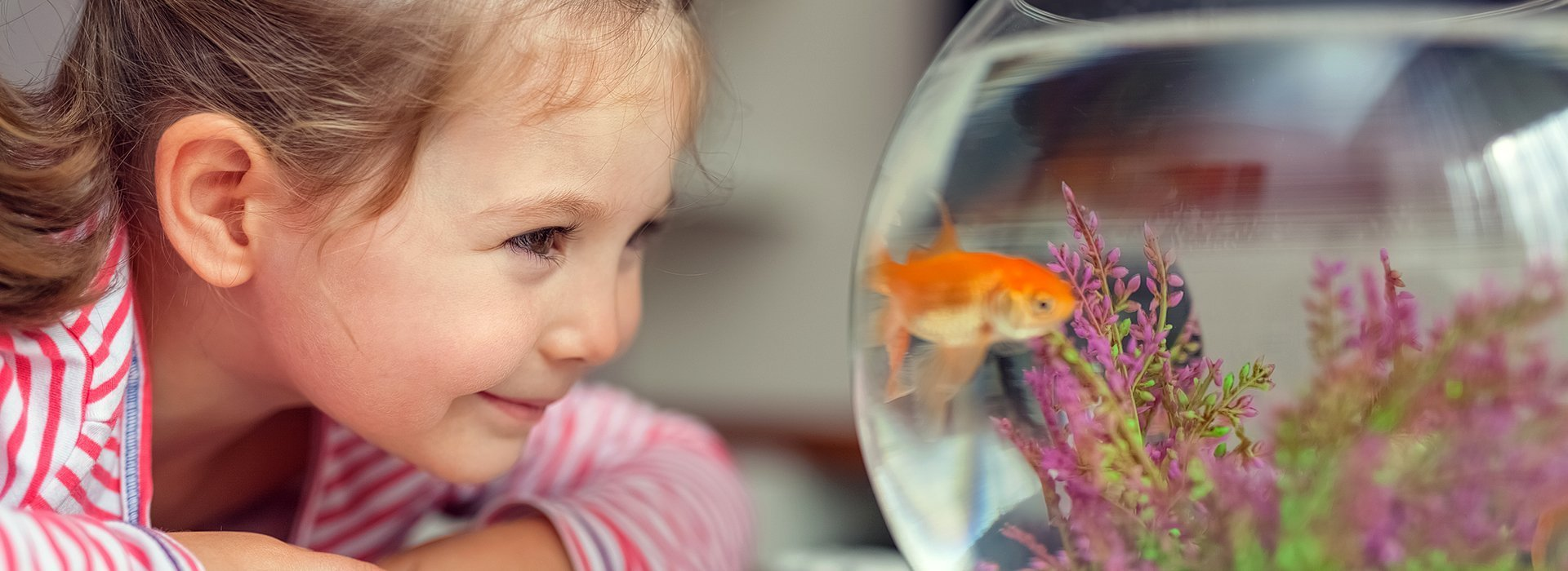 girl looking at her fish