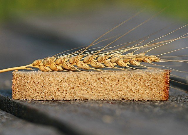 The problem with wheat