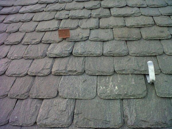 Coperture tetti serpentino