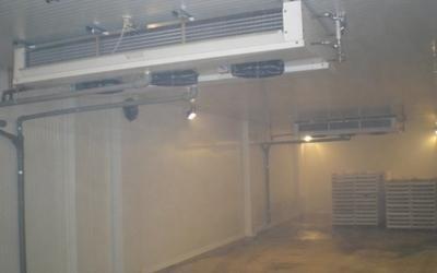 cella frigorifera cuneo