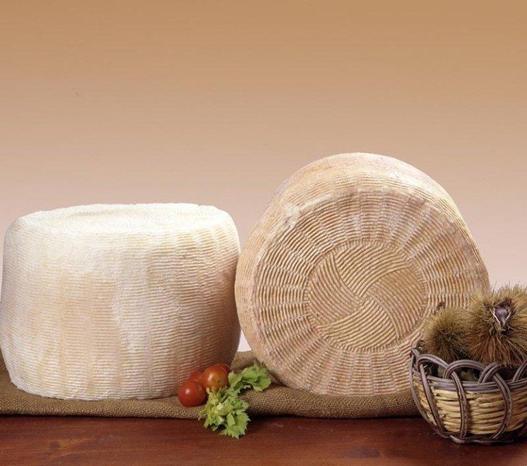 formaggio sardo