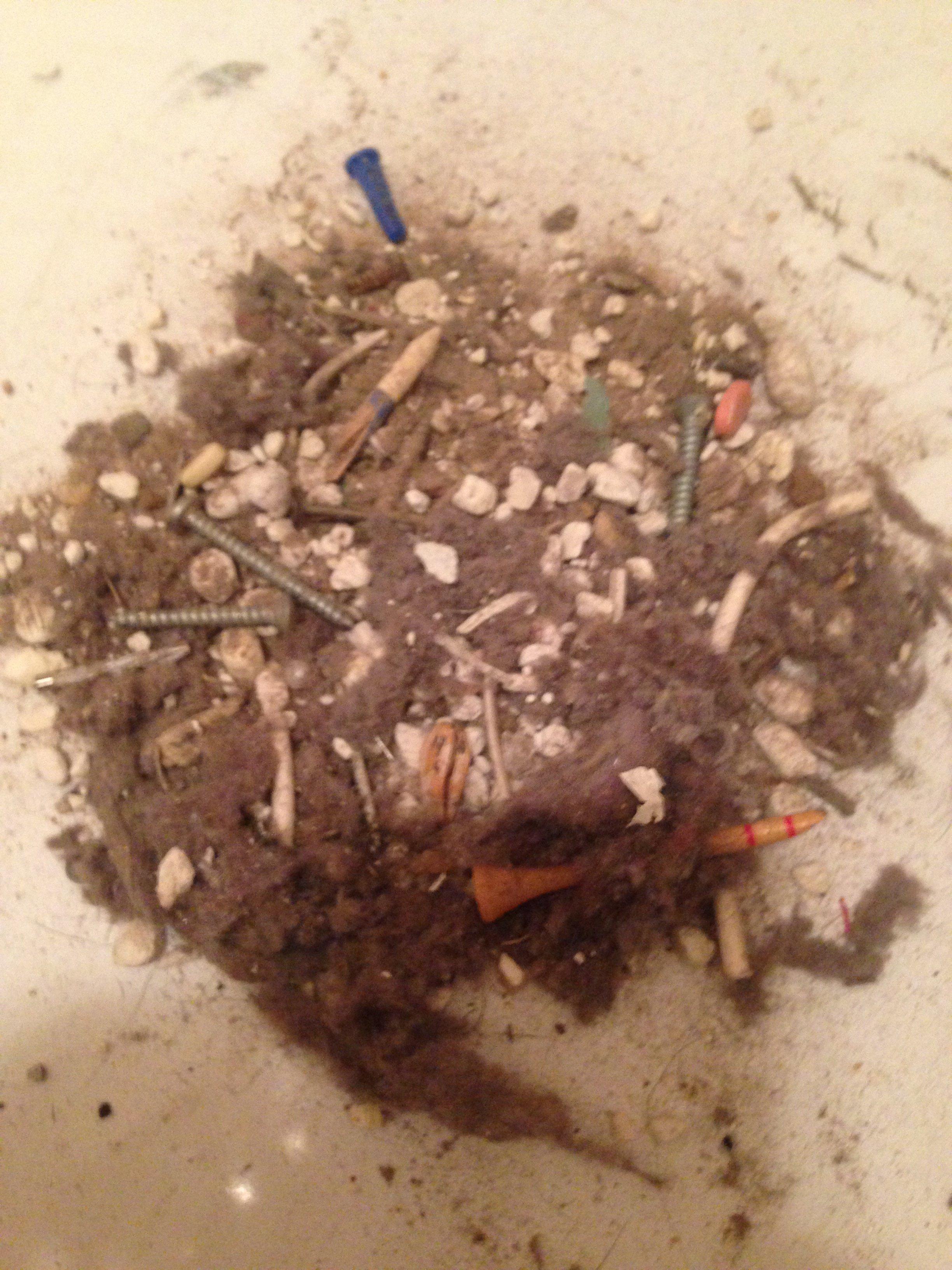 Debris from dryer vent