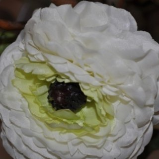 fiori artificiali bianchi