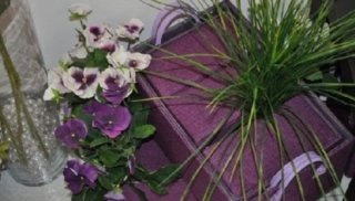 fiori & piante5