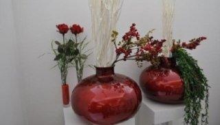 fiori & piante2