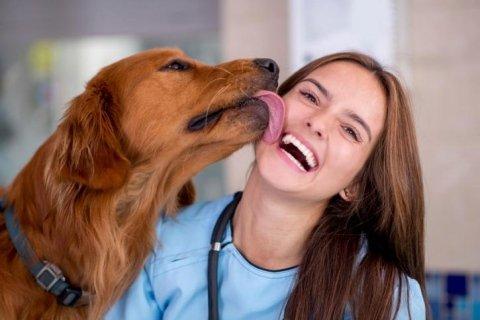 articoli per animali da compagnia