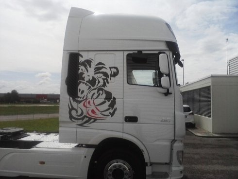 decorazioni camion