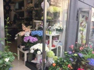 fiori freschi e recisi