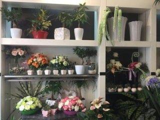 spedizioni fiori