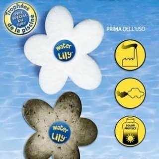Water Lilly – fiore assorbi unto