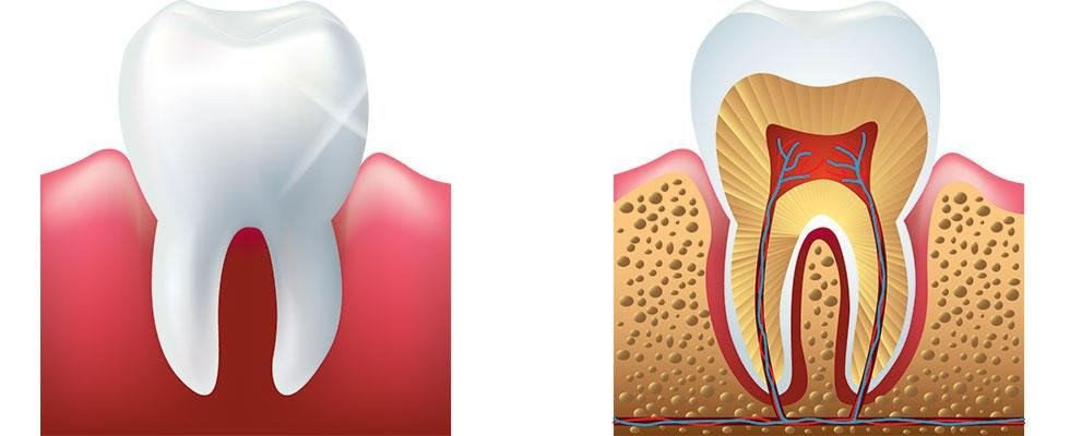 Arte dentale Novara