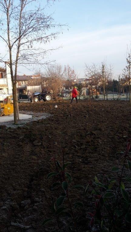 realizzazione e manutenzione giardini Treviso