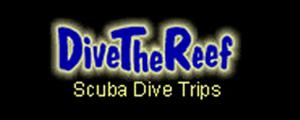 sugarland car rentals dive the reef