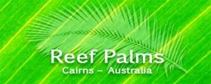 sugarland car rentals reef palms