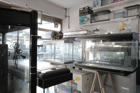 installazione di acquari