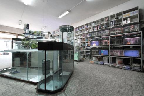 biocondizionatori per acquari