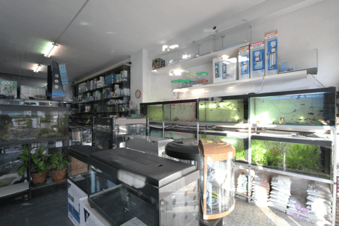 articoli per manutenzione acquari