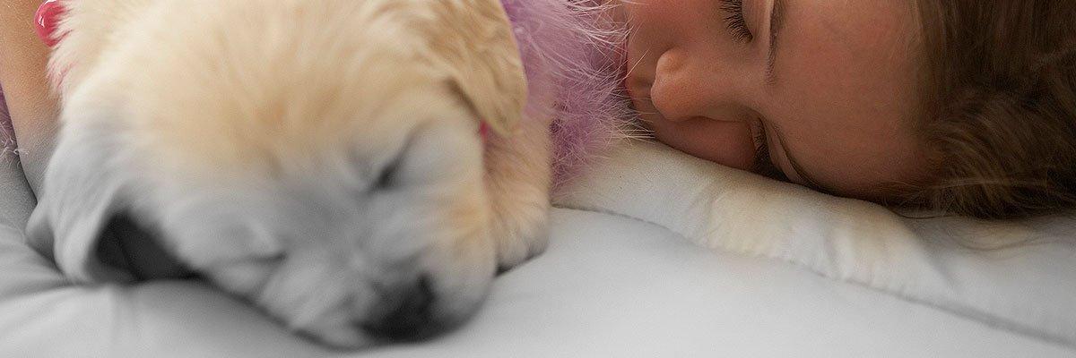 baby and pet dog sleeping