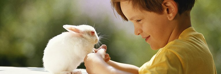young boy with pet rabbit