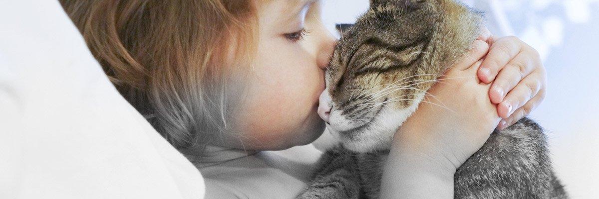 little girl kissing cat