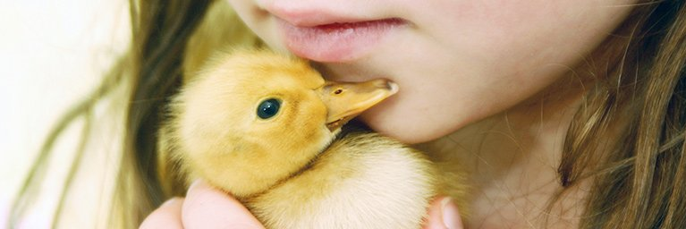 young girl holding chick